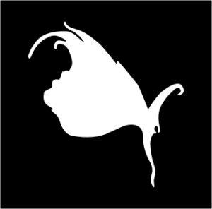 hipfish, mackay, marketing, branding, graphic design, website, websites, web developer